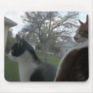 Mousepad Que você que olha?!