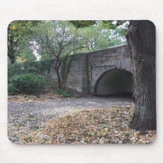 Mousepad Queda na arcada New York NYC da pedra do parque do