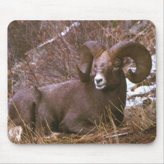 Mousepad Ram do Bighorn