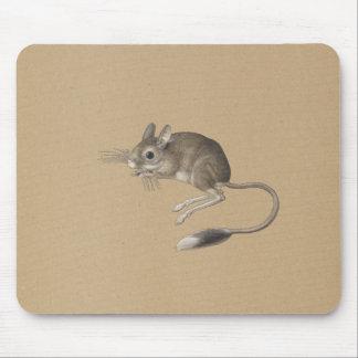 Mousepad Rato com cauda longa - ilustração velha
