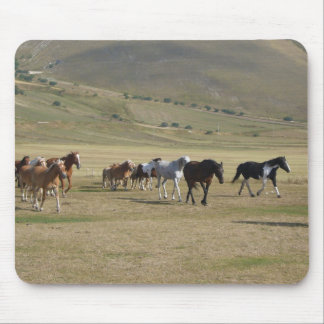 Mousepad Rebanho dos cavalos