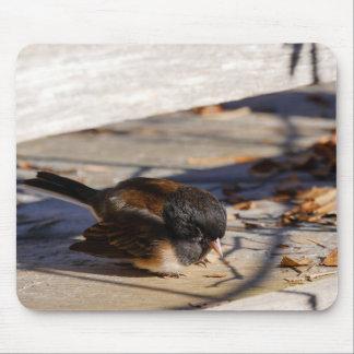 Mousepad Restos de Junko no Sun