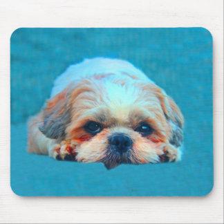 Mousepad Retrato da arte da cor de água do cão de Shih Tzu