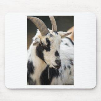 Mousepad Retrato da cabra