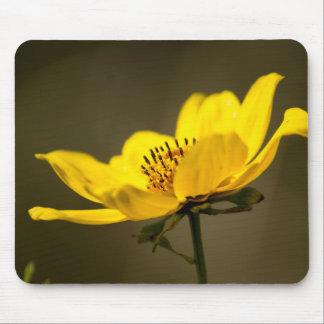 Mousepad Retrato de um tapete do rato amarelo do áster