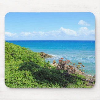 Mousepad rocky-foliage-coast-deerfield-beach-4s6490