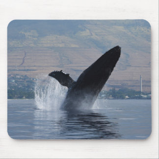 Mousepad rompimento da baleia de humpback