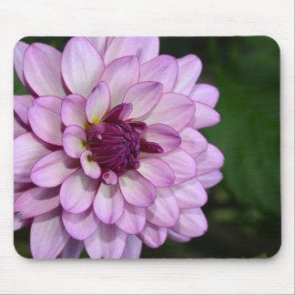 Mousepad roxo das flores da flor da dália
