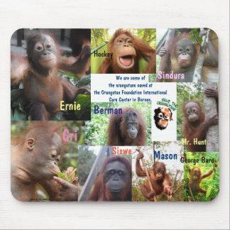 Mousepad Salvamento do órfão do orangotango