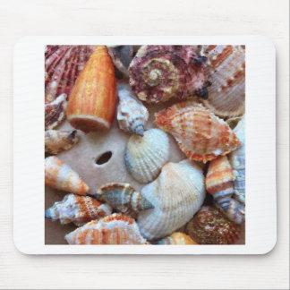 Mousepad Seashells pelo litoral