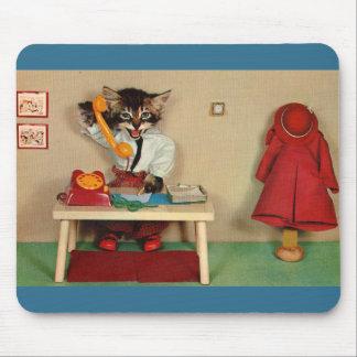 Mousepad secretário RPPC do gatinho do gato malhado