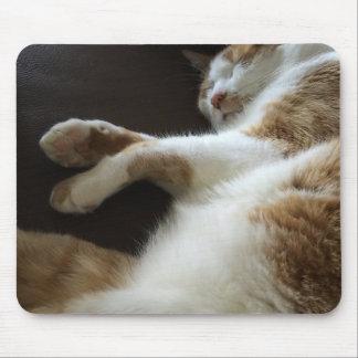 Mousepad Sestas do gato no sofá
