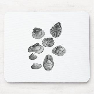 Mousepad Shell esboça