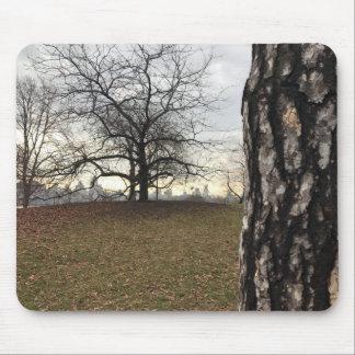 Mousepad Skyline do nascer do sol da árvore do Central Park