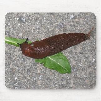 Mousepad Slug