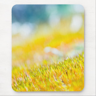 Mousepad Sprouts coloridos