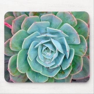 Mousepad Succulent