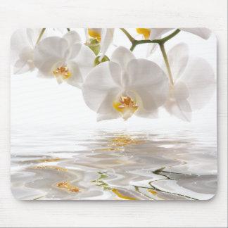Mousepad Tapete do rato branco das orquídeas