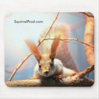 Mousepad Tapete do rato com esquilo