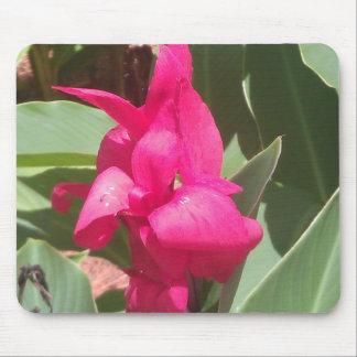 Mousepad Tapete do rato cor-de-rosa da flor