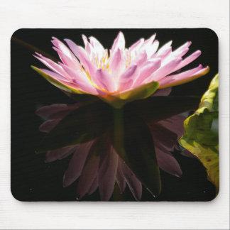 Mousepad Tapete do rato cor-de-rosa de Lotus Waterlily da