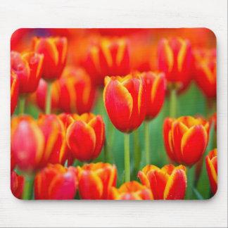Mousepad Tapete do rato da tulipa