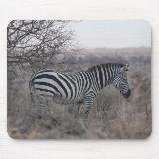Mousepad Tapete do rato da zebra