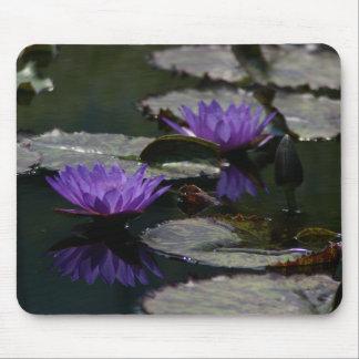 Mousepad Tapete do rato de Lotus Waterlilies de dois roxos