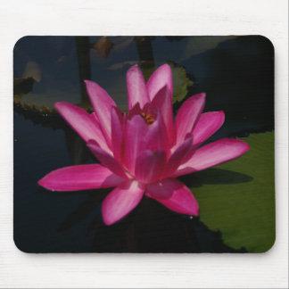 Mousepad Tapete do rato de Lotus Waterlily do rosa quente