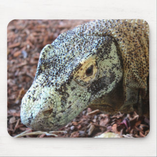 Mousepad Tapete do rato do dragão de Komodo