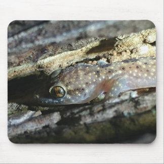 Mousepad Tapete do rato do geco