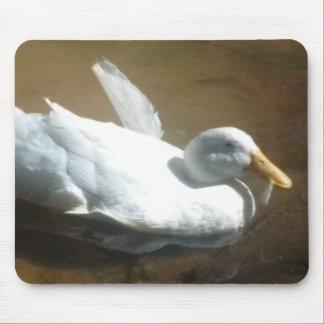 Mousepad Tapete do rato do pato da natação
