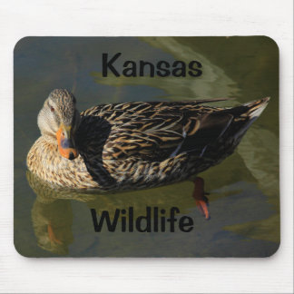 Mousepad Tapete do rato dos animais selvagens de Kansas!!