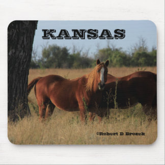 Mousepad Tapete do rato dos cavalos de Kansas!!