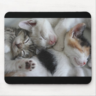 Mousepad Tapete do rato dos gatinhos do sono