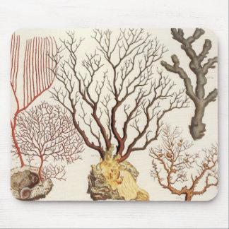 Mousepad Tapete do rato náutico coral da decoração da praia