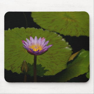 Mousepad Tapete do rato roxo de Lotus Waterlily
