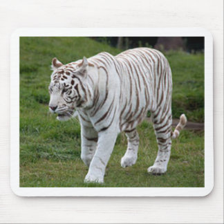 Mousepad Tigre branco