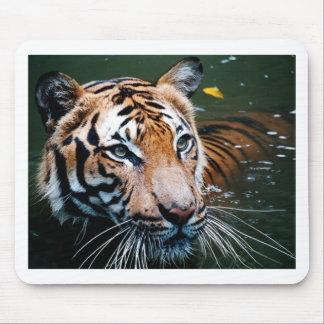 Mousepad Tigre dos alugueres na água