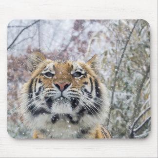 Mousepad Tigre régio na neve