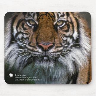 Mousepad Tigre Soyono de Smithsonian | Sumatran
