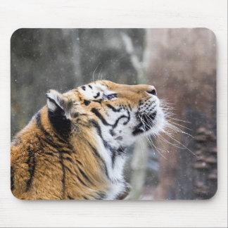 Mousepad Tigre Wistful do inverno