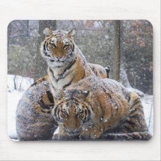 Mousepad Tigres do inverno
