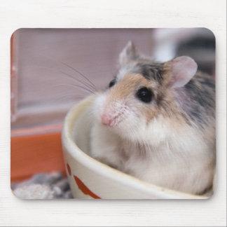 Mousepad Tofu o hamster