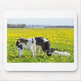 Mousepad Três calfs recém-nascidos no prado dos
