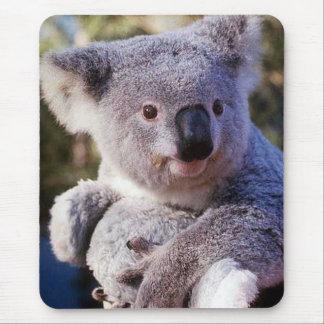 Mousepad Urso de Koala que guardara um urso de Koala