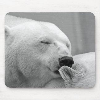 Mousepad Urso polar de descanso bonito