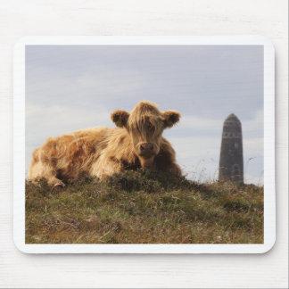 Mousepad Vaca de Luing na ilha de Islay, Scotland