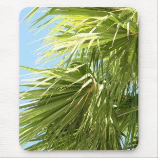 Mousepad ventoso da palma
