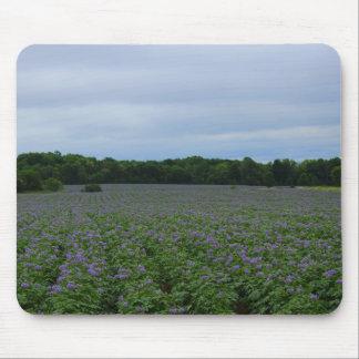 Mousepad Verão 2016 do campo da batata
